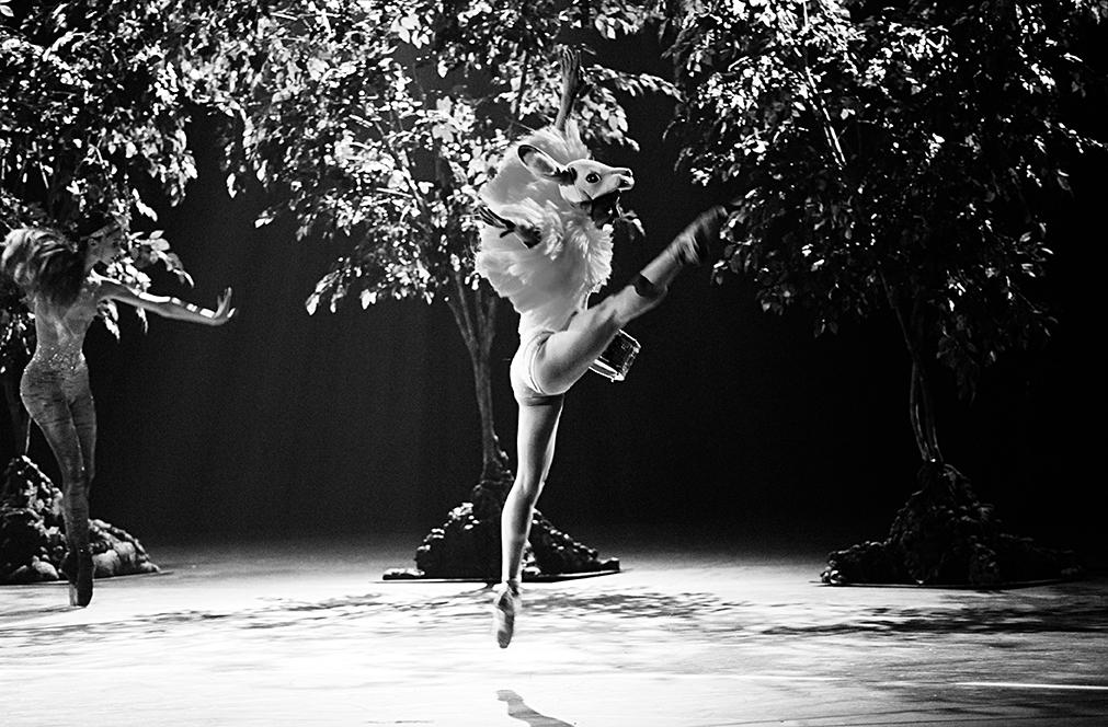 Kill Bambi Verbruggen Les Ballets de Monte-Carlo