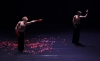 Le Spectre de la Rose Goecke Les Ballets de Monte-Carlo